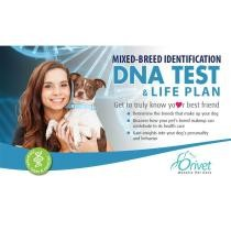 $10 off Mixed Breed Dog Identification DNA Test & Life Plan + Free Shipping