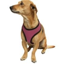 15% off Dog Harness