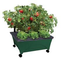 21% off City Pickers Patio Raised Garden Bed Grow Box Kit