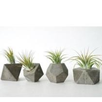 $29 Rustic Concrete Geometric Planters 4 Pack + Free Shipping