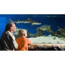 44% off Austin Aquarium Tickets