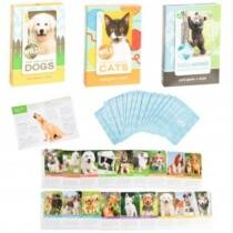 45% off Wild Cards Animal Card Game & Book for Kids + Free Shipping