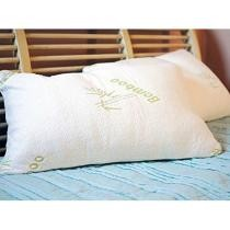 88% off Aloe & Bamboo Memory Foam Hypoallergenic Pillow