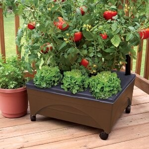 EMSCO GROUP 20-in W x 24-in L x 10-in H Earth Brown Resin Raised Garden Bed
