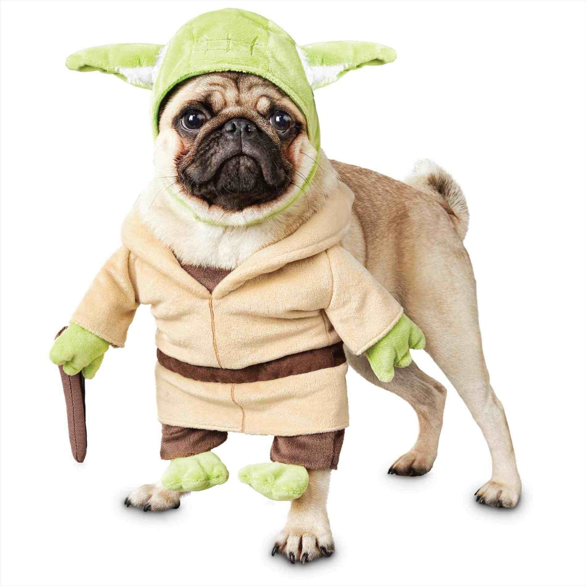 Petco Star Wars pet toys, beds, clothes, etc. 60% off! $2.8