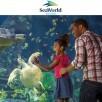 SeaWorld Gold Annual Pass eticket $95