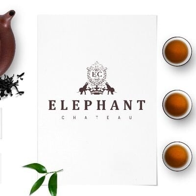 Elephant Chateau