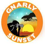 Gnarly Sunset