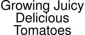 Exclusive Coupon Codes at Official Website of Growing Juicy Delicious Tomatoes