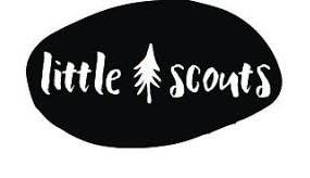 Little Scouts