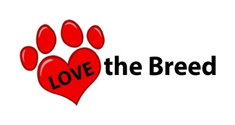 Love The Breed