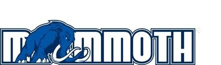 Mammoth Cooler