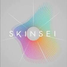 Skinsei