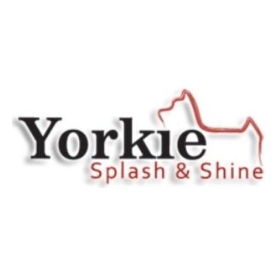 Yorkie Splash And Shine