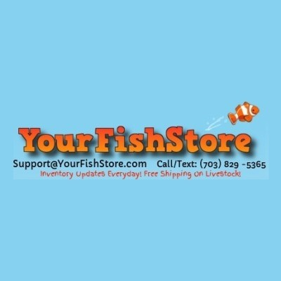 Your Fish Store